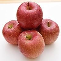 青森産 りんご 20玉 青森県産 リンゴ 人気 新鮮