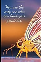 You are the only one who can limit your greatness.: Notebook Planer Diary Gift Todo