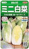 サカタのタネ 実咲野菜2620 ミニ白菜 黄味小町 00922620