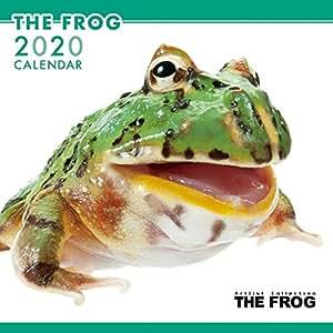 カレンダー 2020 壁掛け THE FROG かえる 403341 2019年9月-2020年12月 アーリスト カエル 蛙