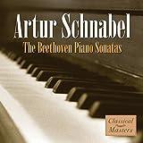 The Beethoven Piano Sonatas