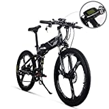 RICH BIT TP860 電動アシスト自転車 折りたたみ 26インチ 36V*12.8AHリチウムバッテリー 250W電動自転車 MTBマウンテンバイク 専用充電器付(グレー)