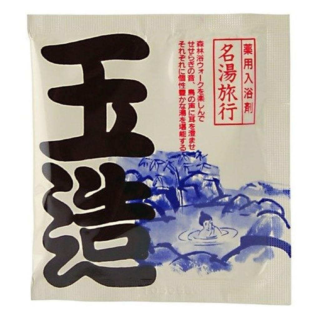 アッパーまろやかなキャッチ五洲薬品 名湯旅行 玉造 25g 4987332126782