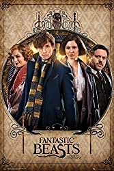 Fantastic Beast and Where to find them Poster - Characters (61cm x 91,5cm)