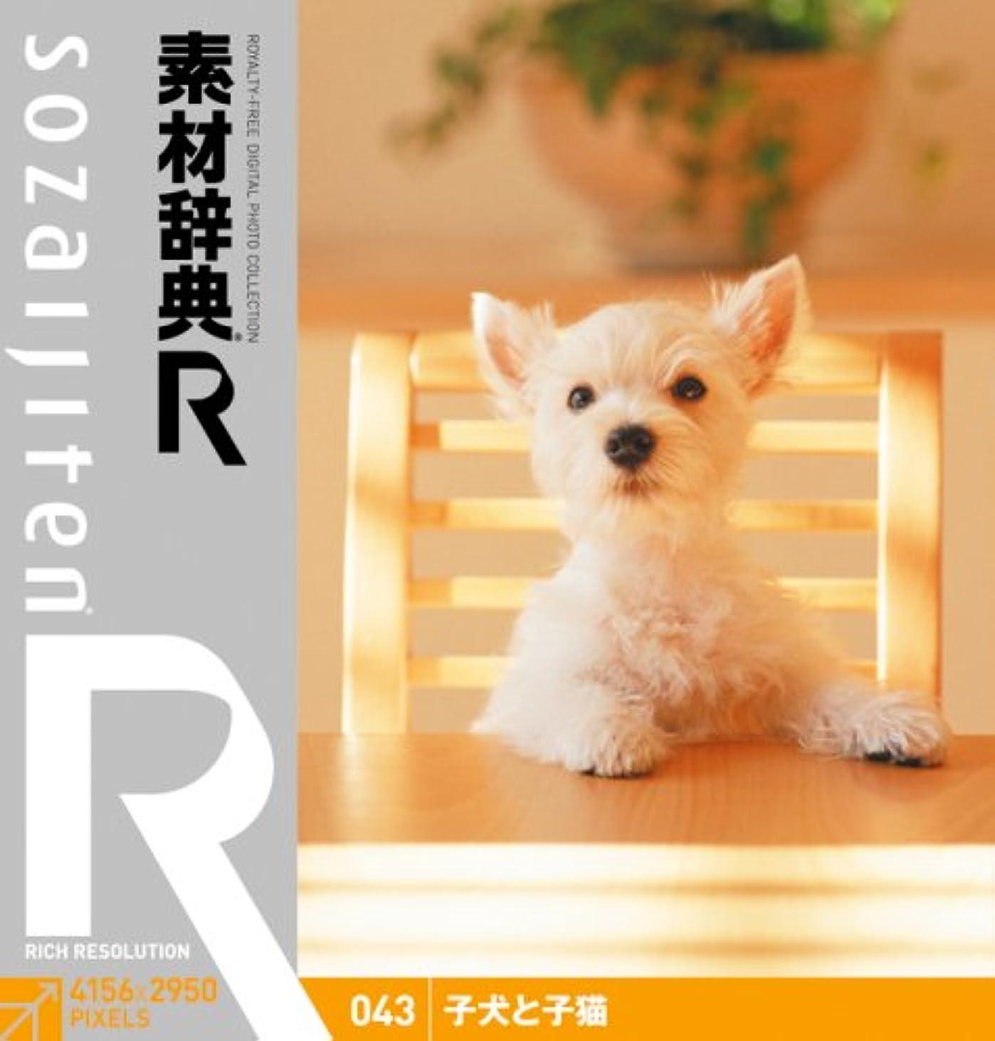 素材辞典[R(アール)] 043 子犬と子猫