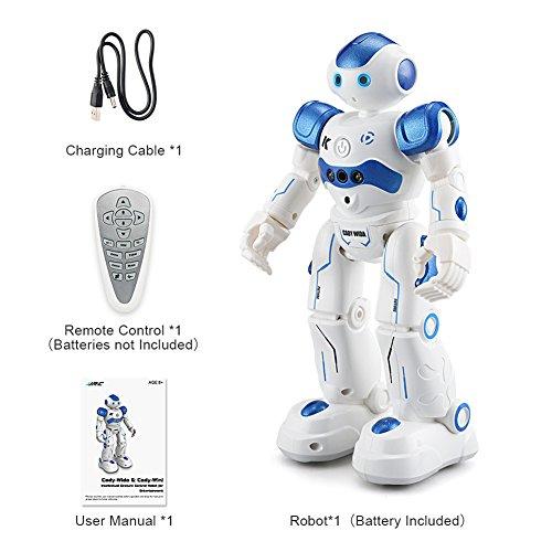 R2ロボット 充電式 USB プログラム可能 Zyurong 知能人型ロボット リモートコントロール ジェスチャーコントロール ラジコン 音楽ダンス 小学生 二足歩行 子供用