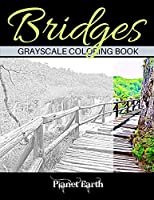 Bridges Grayscale Coloring Book: Beautiful Bridges in the Forest. Grayscale Coloring Book for Adults.