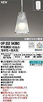 オーデリック ODELIC【OP252543BC】住宅用照明 インテリアライト ペンダントライト