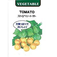 種 食用ほおずき ストロベリートマト 小袋(約30粒)