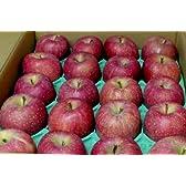 長野産  信州リンゴ サンふじ 10kg 中玉36~40個入り
