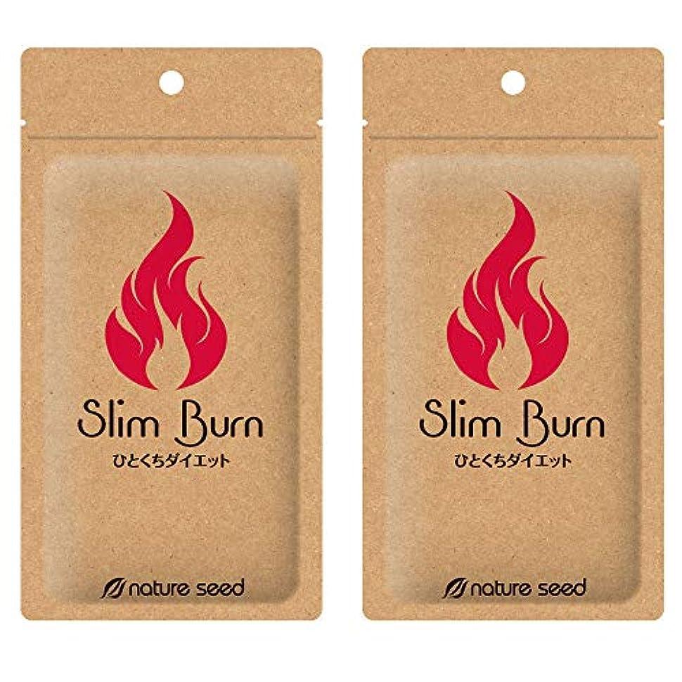 気をつけてアパート気晴らし[燃焼サプリ]ダイエット 脂肪燃焼 くびれメイクをサポート サプリメント スリムバーン 2袋(約60日分)