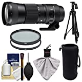 Sigma 150 – 600 mm F / 5.0 – 6.3 DG OS HSM Contemporaryズームレンズfor Canon EOS DSLR Cameras with Pistol Grip Tripod + UV & C..
