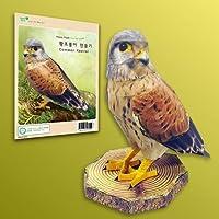 Papertoy - Eco Series Common Kestrel