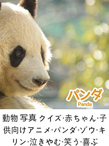 動物 写真 クイズ・赤ちゃん・子供向けアニメ・パンダ・ゾウ・キリン・泣きやむ・笑う・喜ぶ