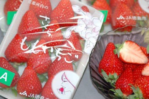 徳島県産 さくらももいちご 1パック 220g入 家庭用 訳あり いちご 苺 イチゴ