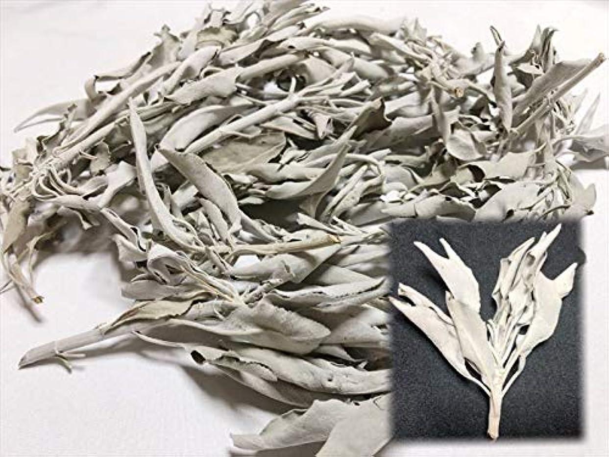 不透明なエミュレーションカイウスホワイトセージ 30g 有機栽培 浄化 枝付き 完全密封 乾燥剤入り カリフォルニア産 お香 スピリチュア
