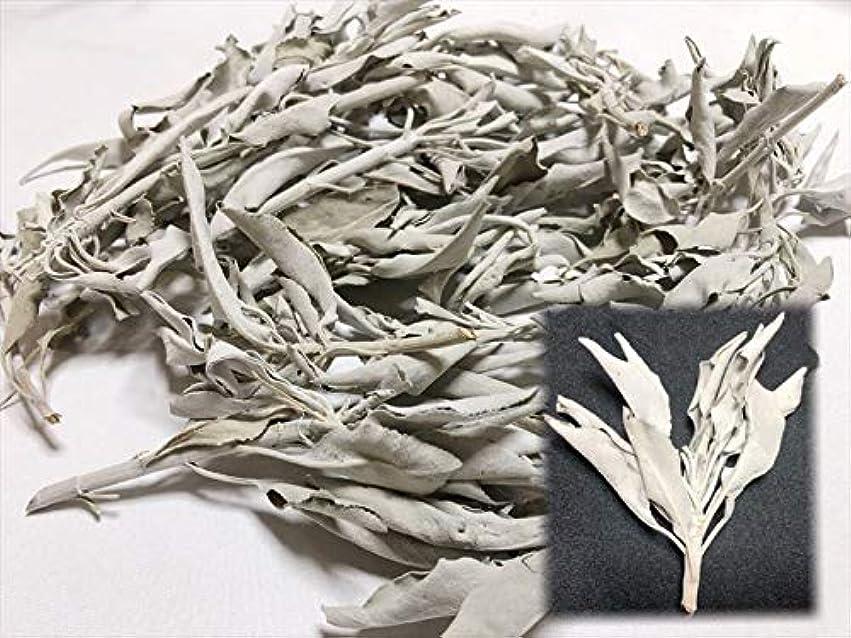 ラグ肘貧しいホワイトセージ 30g 有機栽培 浄化 枝付き 完全密封 乾燥剤入り カリフォルニア産 お香 スピリチュア