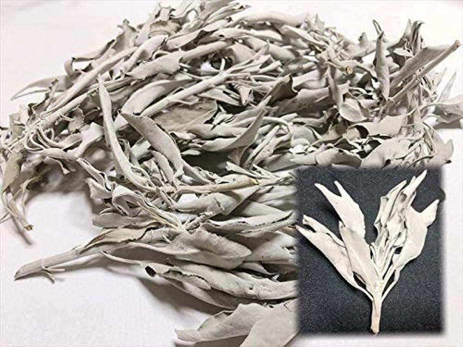 顔料乱雑な仕立て屋ホワイトセージ 30g 有機栽培 浄化 枝付き 完全密封 乾燥剤入り カリフォルニア産 お香 スピリチュア