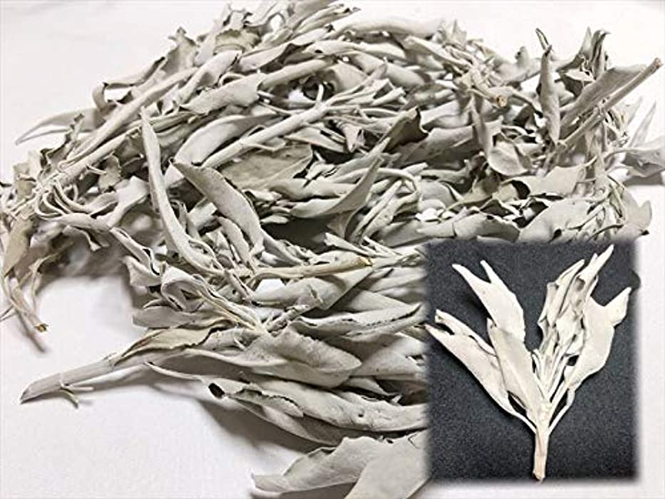 邪魔するデンマーク語提案ホワイトセージ 30g 有機栽培 浄化 枝付き 完全密封 乾燥剤入り カリフォルニア産 お香 スピリチュア