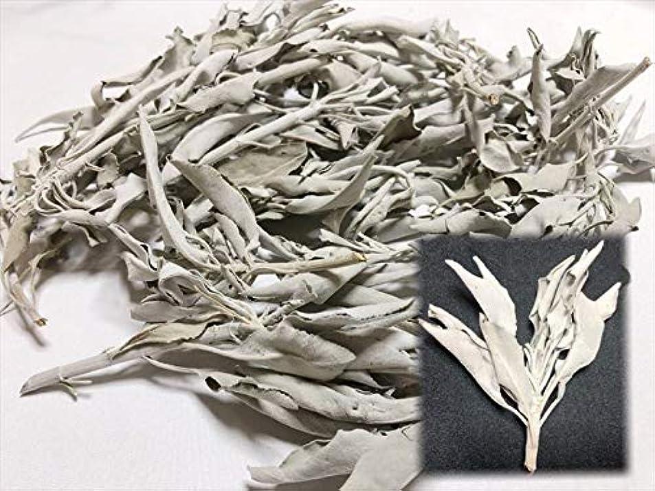 カスケード応援する側面ホワイトセージ 30g 有機栽培 浄化 枝付き 完全密封 乾燥剤入り カリフォルニア産 お香 スピリチュア