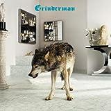 Grinderman 2 [解説付/ボーナストラック2曲収録/国内盤] (BRC274)
