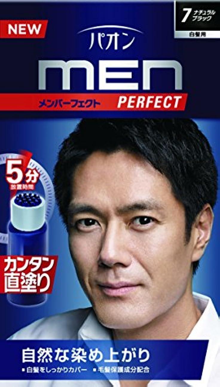 口ひげ外側アグネスグレイパオン メンパーフェクト 7 ナチュラルブラック 40g+40mL (医薬部外品)