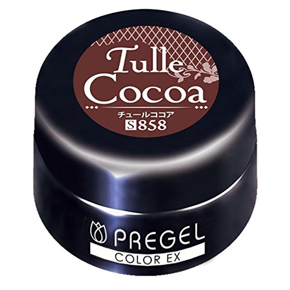 静けさ一時解雇する後方PRE GEL カラーEX チュールココア858 3g UV/LED対応 カラージェル