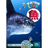 DVD付 魚 (学研の図鑑LIVE)
