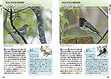 鳴き声から調べる野鳥図鑑—おぼえておきたい85種 (音声データCD付き) 画像