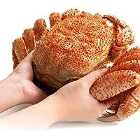 カニ問屋 さっぽろ朝市 毛蟹 超特大 天然 毛ガニ 浜茹で 蟹 最高ランク 堅ガニ (1.2kg×1尾)