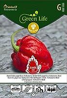 Seklos LT唐辛子ハバネロ赤 - 10種子