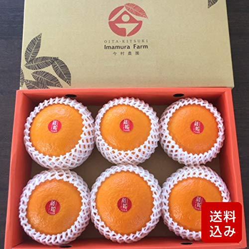 紅甘夏 贈答用 6玉入 化粧箱入 蔵姫 大分県産 母の日 ギフト メッセージカード対応