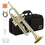 Eastar ETR-380トランペット Bb調 Trumpet お手入れセット (ゴールドブラス)