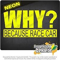 なぜレースカーだから Why Because Race Car 20cm x 10cm 15色 - ネオン+クロム! ステッカービニールオートバイ