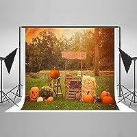 ケイト5x 7ftハロウィンかぼちゃ写真の背景幕屋外装飾用背景とHayrick Backdrops for Studioフォト