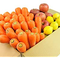 無農薬にんじん野菜セット(無農薬にんじん3kg+りんご1kg+レモン500g)