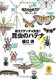 教えてゲッチョ先生! 昆虫のハテナ (ヤマケイ文庫)
