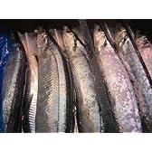 塩秋刀魚(塩サンマ) 1尾