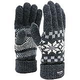 (シンサレート) Thinsulate 手袋 メンズ グローブ ニット 雪柄 ノルディック 高機能中綿素材 4color