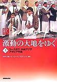 NHKスペシャル 新シルクロード―激動の大地をゆく〈上〉コーカサス・中央アジア・アラビア半島 画像