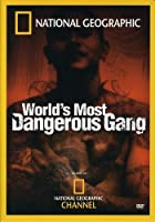 World's Most Dangerous Gang [DVD] [Import]