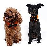 Seeshine 犬 ネクタイ ペット 首輪 襟付け 蝶ネクタイ 首飾り 紳士風 ファッション サイズ調節可能 全3色4サイズ可選 (黒・黄色, L)