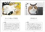 ねこ語会話帖: 猫の言葉をシンプルに理解するためのフォトブック 画像