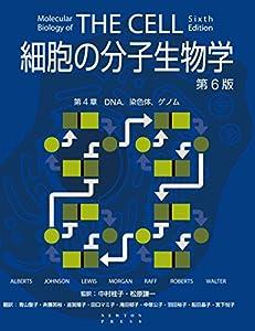細胞の分子生物学 第6版 第4章 DNA,染色体,ゲノム 細胞の分子生物学 第6版
