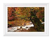 木製の枠 ズックの印刷する絵画 家の壁の装飾画 ポスター (35x50cm ホワイト) 自然の秋の風景、川の木、苔、赤い葉