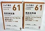 【第2類医薬品】ツムラ漢方桃核承気湯エキス顆粒 20包 ×2