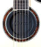 CRAFTER ( クラフター ) AFS-70(フィードバック サプレッサー) ハウリング防止・音量の制御 アコースティックギターに!