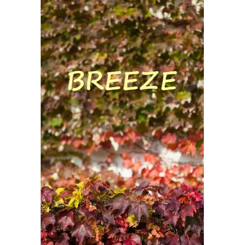 breeze (English Edition)