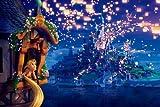 映画 ディズニー 塔の上のラプンツェル Tangled ポスター 約42x30cm 【並行輸入品】