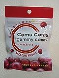 カムカムグミキャンディ(42g)×10袋セット